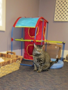 Car-E is not impressed that Errol's baby is not eating the treats because he is just an ungrateful baby.