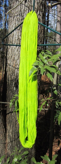 Dyeing Yarns at Catcatcher Corner (3/4)