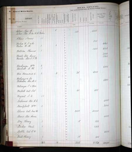 BatesonThomas1874 PropertyTaxDigest