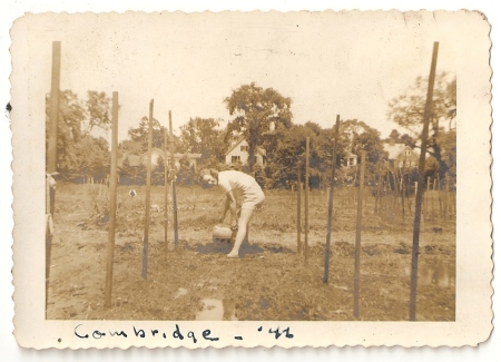 In the garden in Cambridge, Massachusetts, 1946. (Added 2/18/2015)
