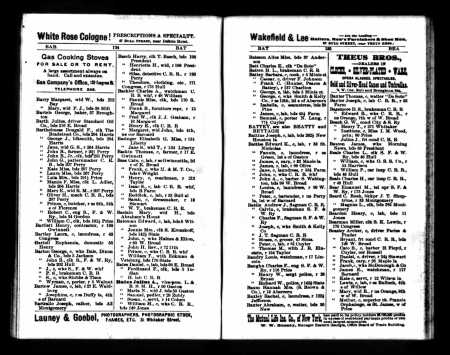 Savannah City Directory, 1893, before cropping.