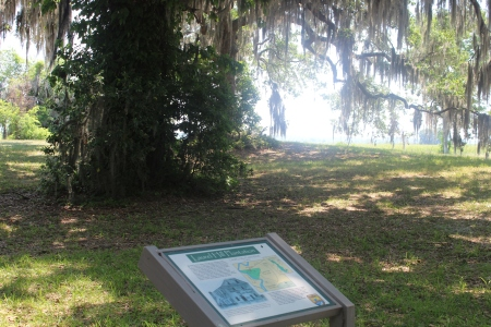 LaurelHill Marker and 2nd tree
